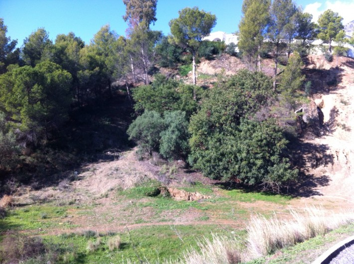 Plot for Sale in Mijas